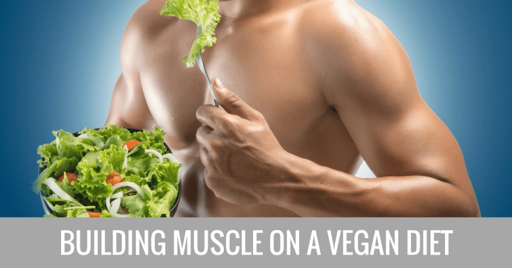 building muscle on a vegan diet