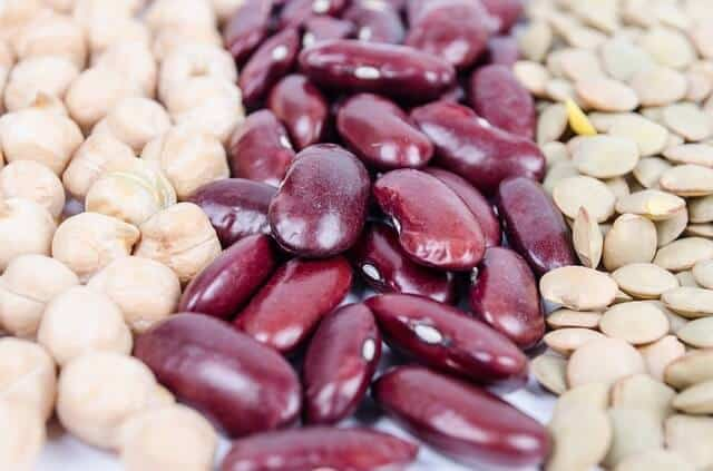 beans protein on a vegan diet gut