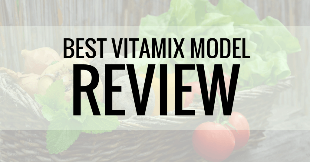 best vitamix model review