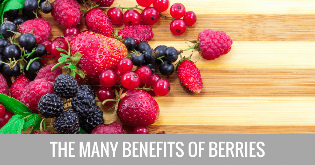 berries antioxidants benefits longevity
