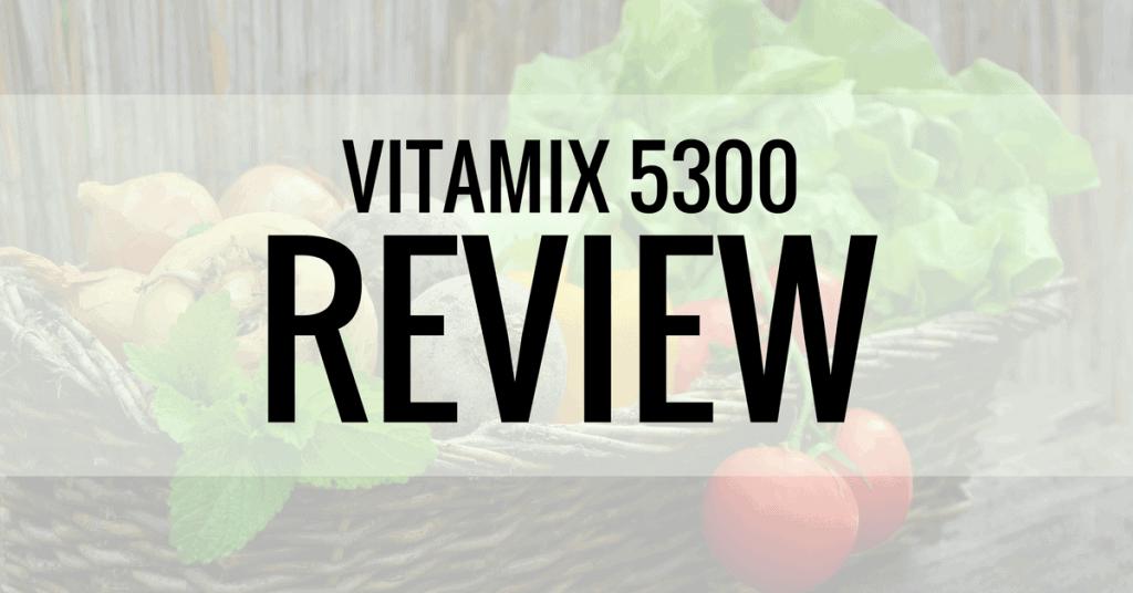 vitamix 5300 review