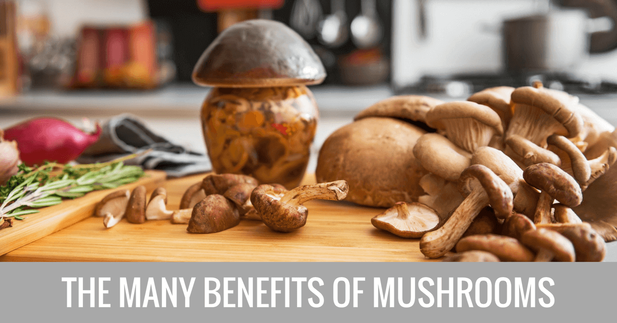 mushroom benefits and nutritional value
