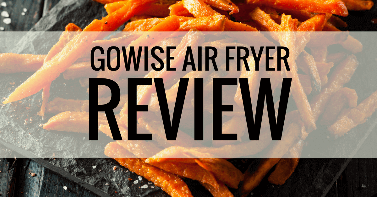 gowise air fryer review