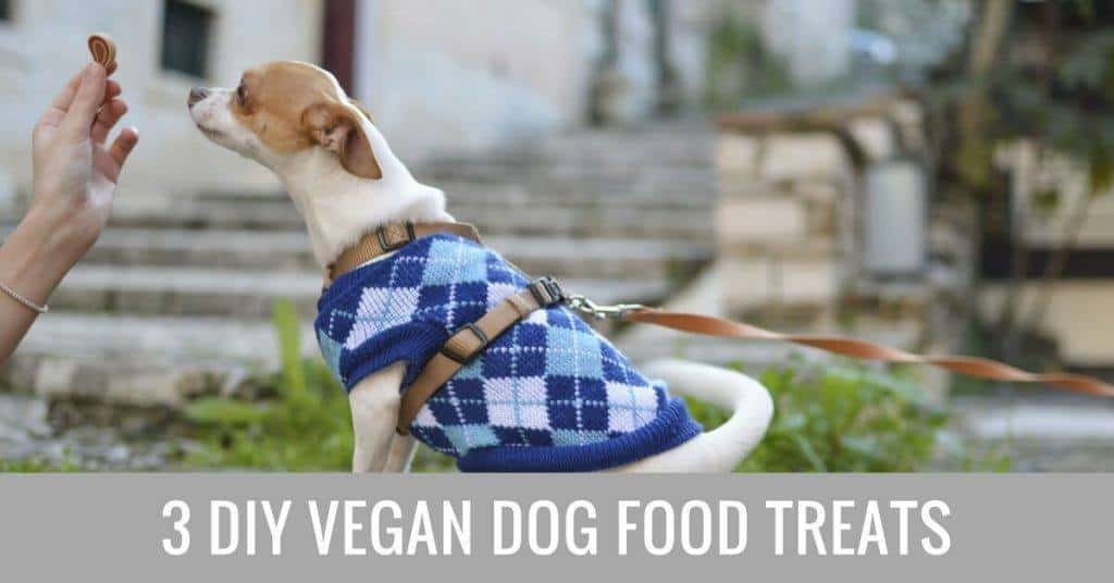 DIY vegan dog food treats (1)