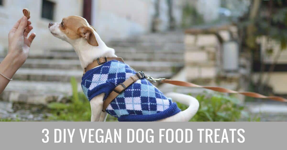 DIY vegan dog food treats (1)