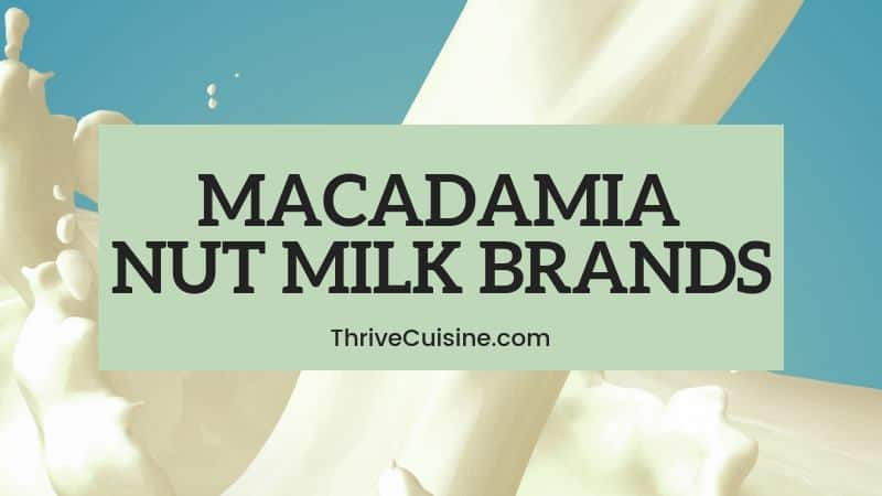 MACADAMIA NUT MILK BRANDS