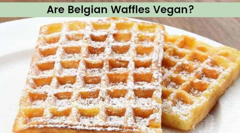 are belgian waffles vegan
