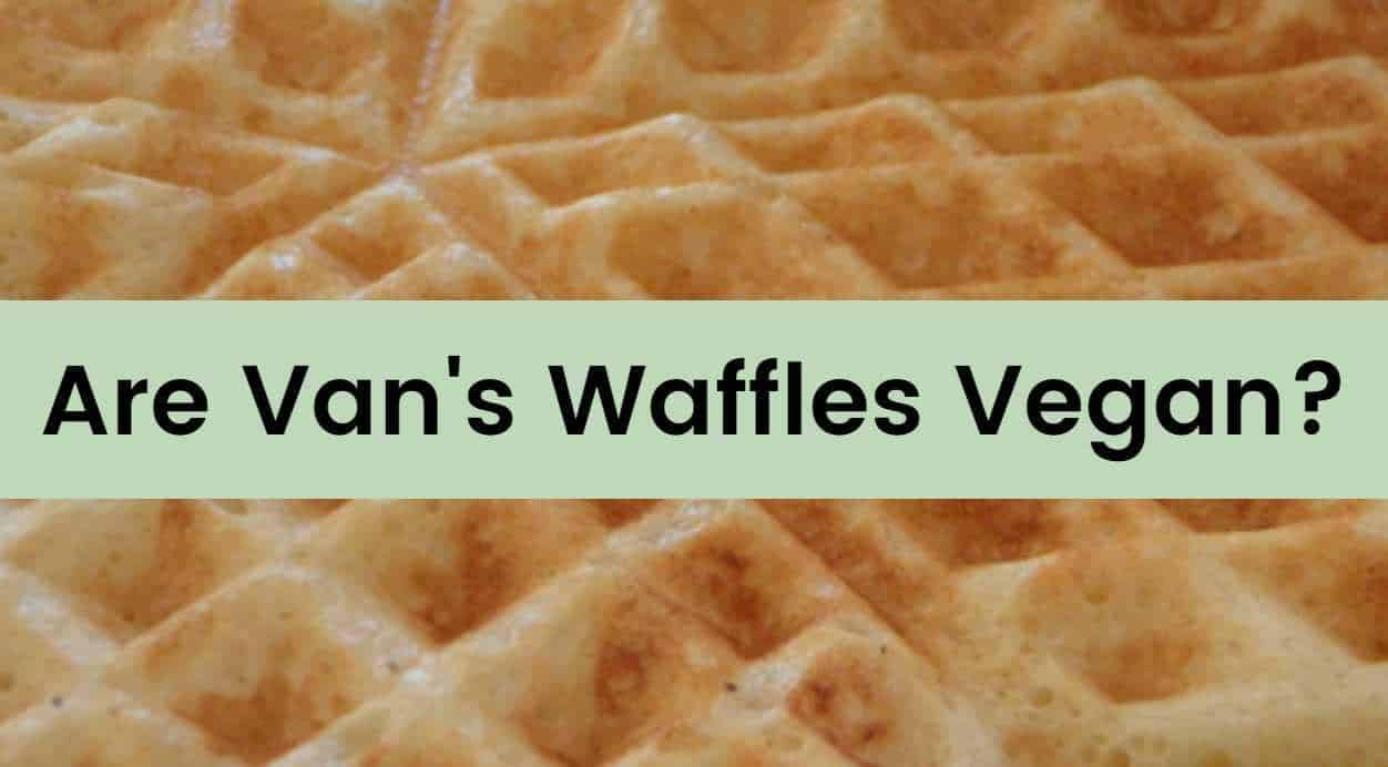 are vans waffles vegan