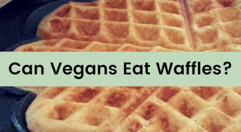 can vegans eat waffles