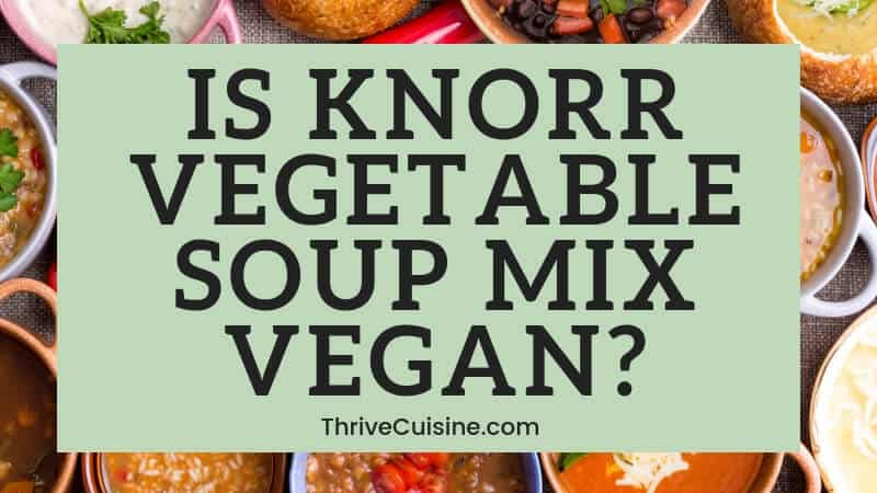 is knorr vegetable soup vegan