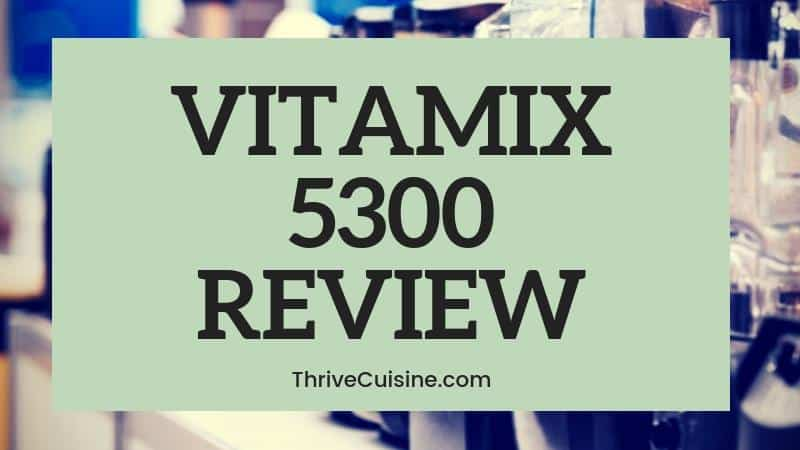 VITAMIX 5300 BLENDER REVIEW