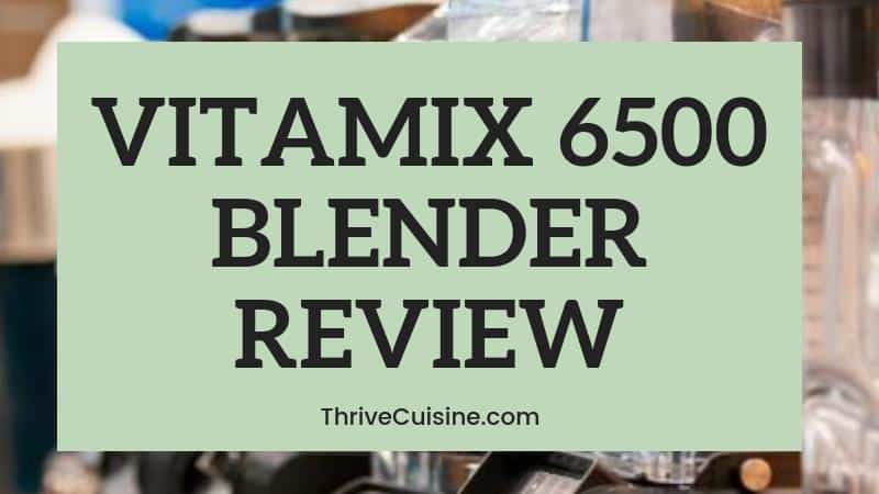 VITAMIX 6500 BLENDER REVIEW