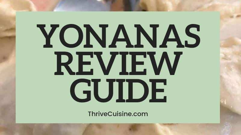yonanas review guide