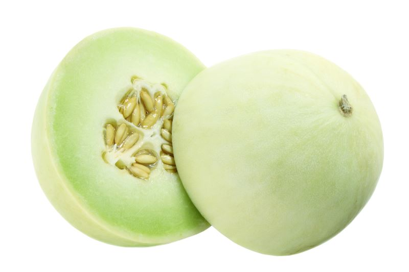 picture of honeydew melon