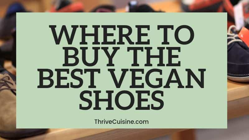 where to buy the best vegan shoes (2)