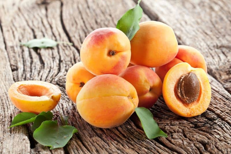 Apricots on a table