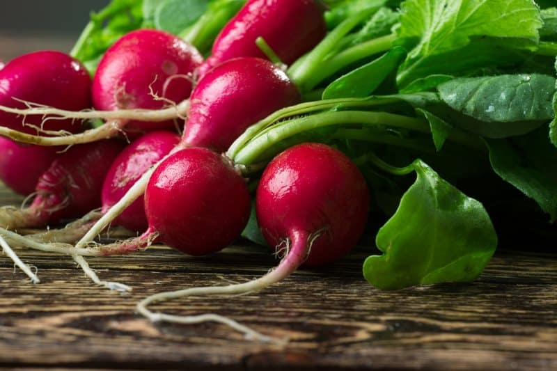 Bunch of fresh radishes on wooden table