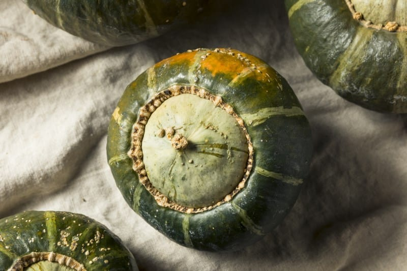 Raw Organic Buttercup Squash Ready to Cut