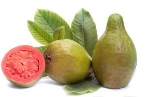 Fresh Guava fruit with leaves on white background