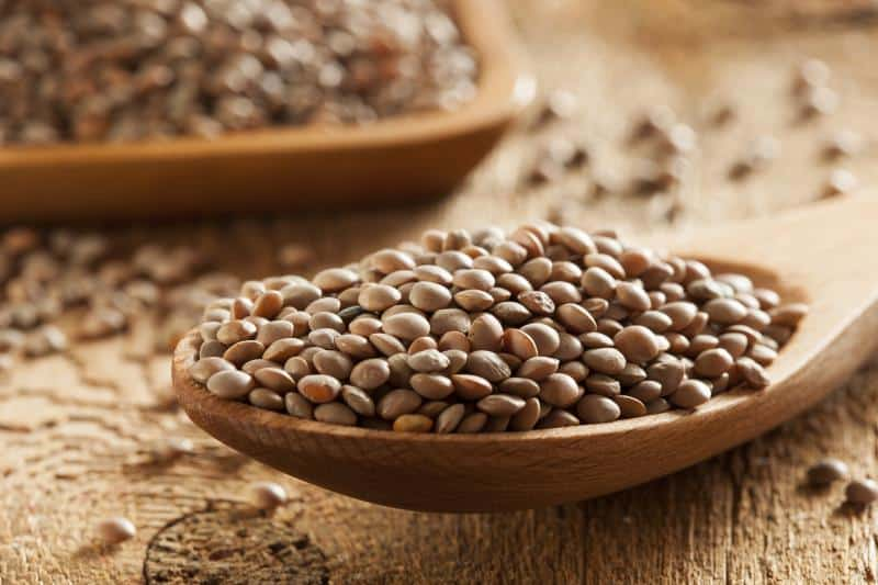 Dry Organic Brown Lentils against a background
