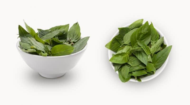 Thai Basil in a white bowl