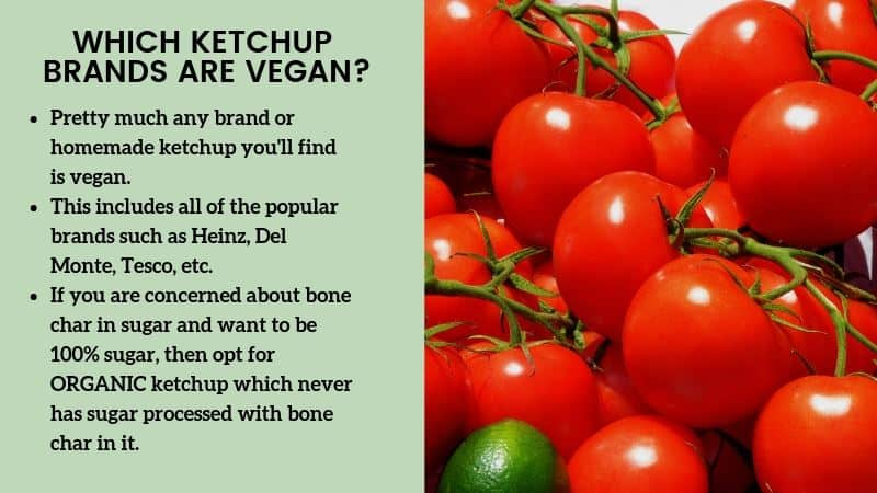 IS KETCHUP VEGAN