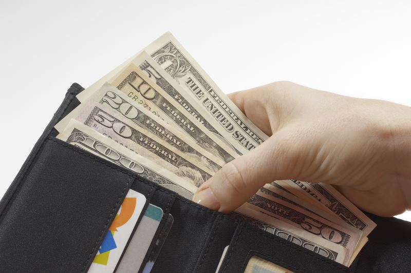 vegan wallet full of money