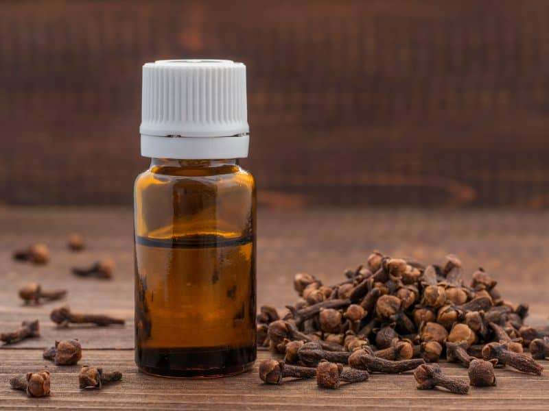 A bottle of clove oil next to whole cloves on a wooden surface.