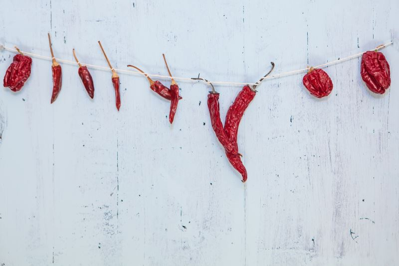 Dried chiles on a string against a white wall.