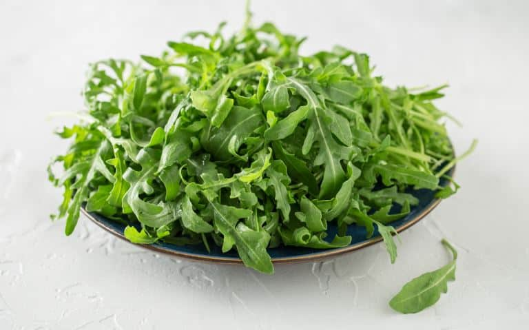 Arugula on a plate on a white table.