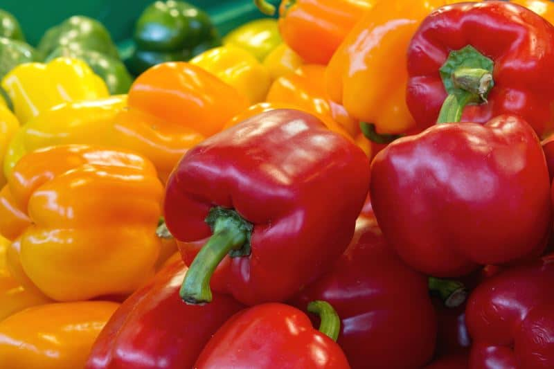 Red, orange, yellow and green bell peppers at the market