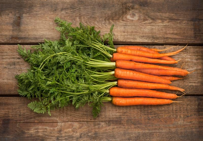 Raw carrots with green tops on a wooden table