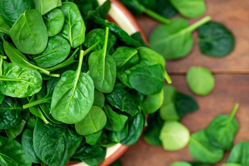 Close-up of baby spinach in a bowl