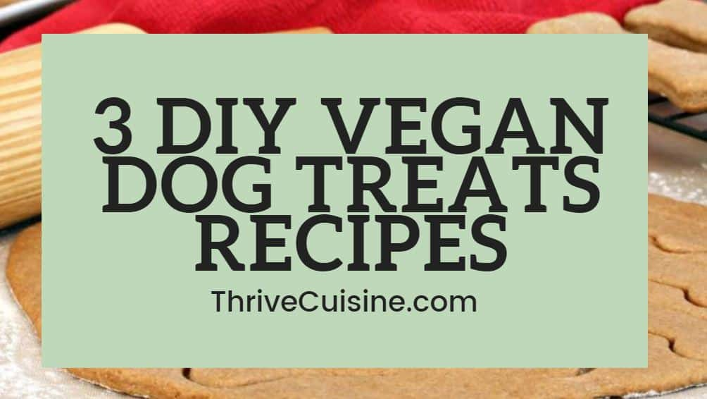 3 diy vegan dog treats recipes