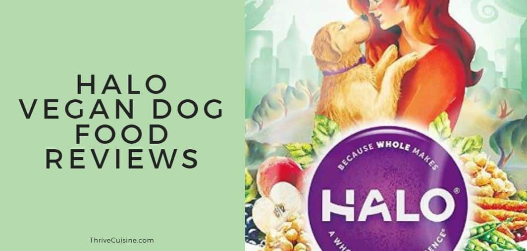 Halo Vegan Dog Food Reviews Dry And Wet