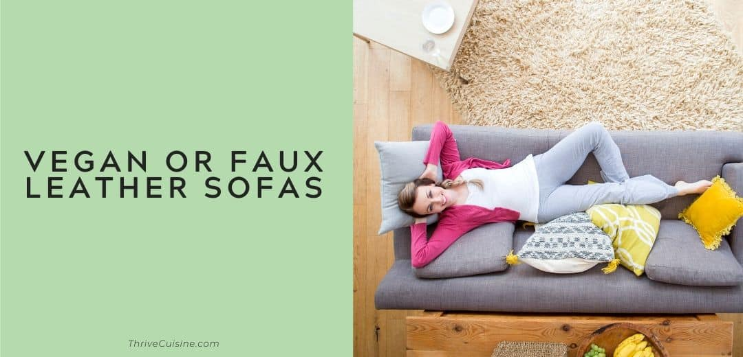 vegan or faux leather sofas graphic
