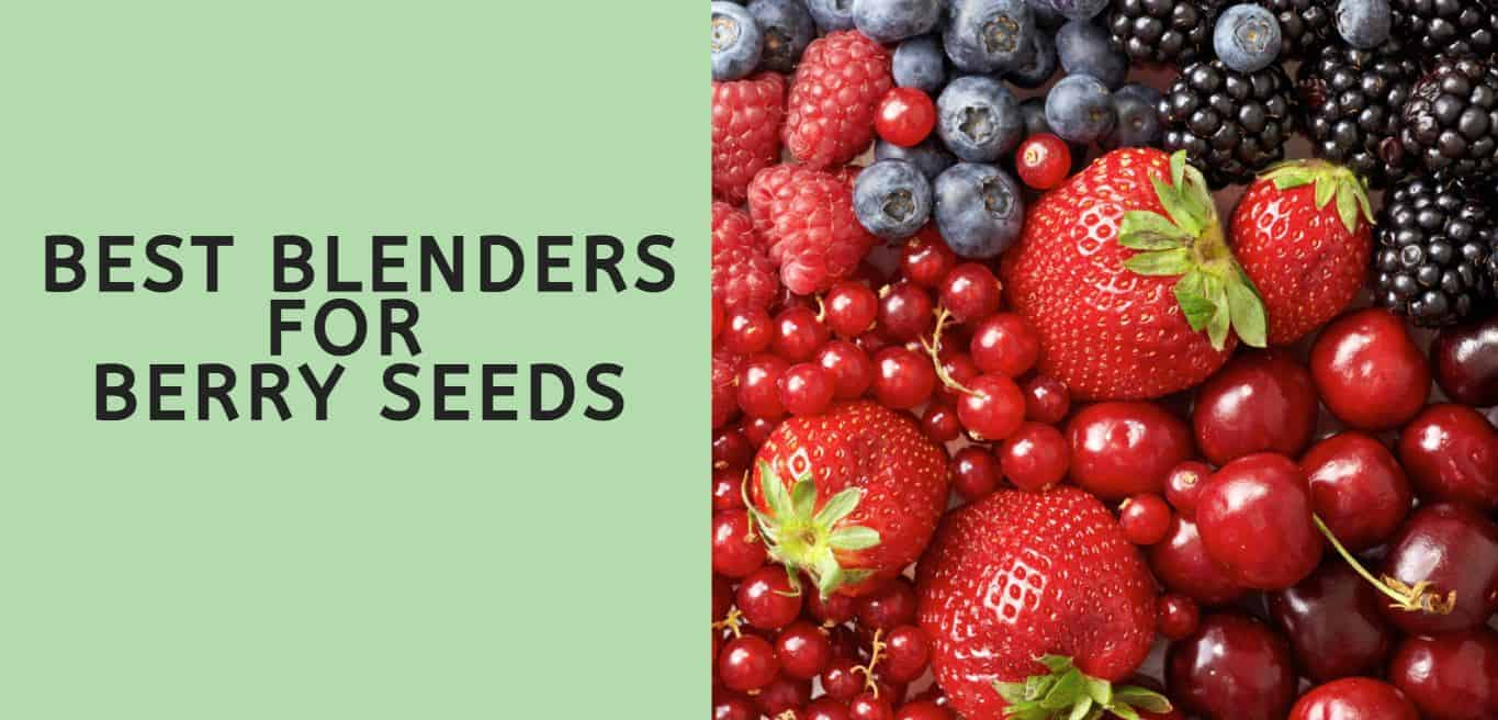 Best Blenders for Berry Seeds