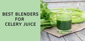 Best Blenders for Celery Juice
