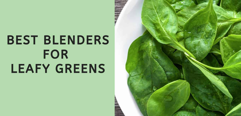 Best Blenders for Leafy Greens