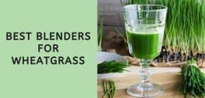 Best Blenders for Wheatgrass