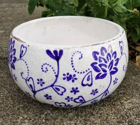 Alexus Ceramic Pot Planter