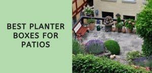 Best Planter Boxes for Patios
