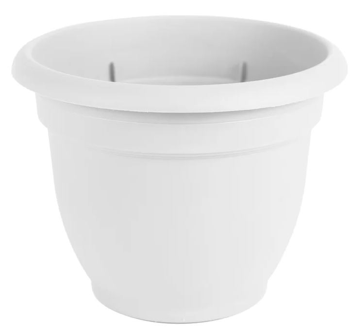 Cordeiro Self Watering Plastic Planter