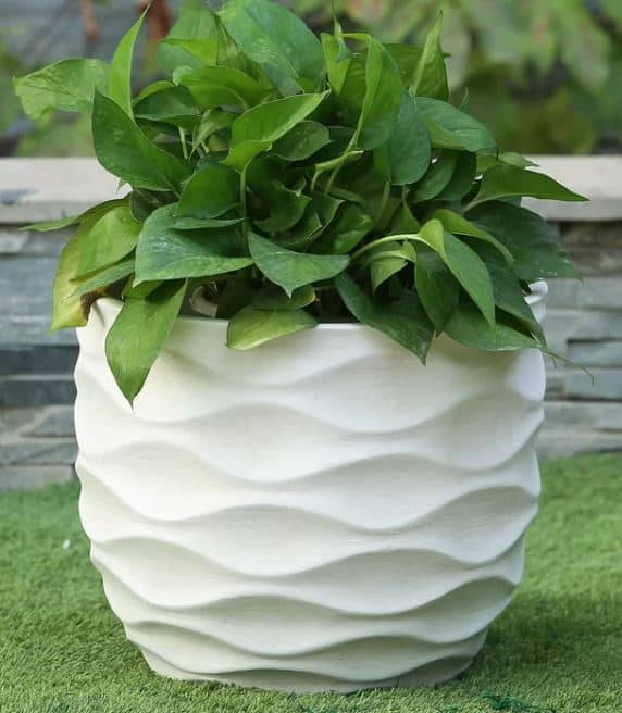 Cowie Wavy mgO Fiberclay Pot Planter