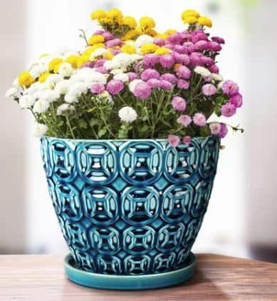 Crowley Ceramic Planter
