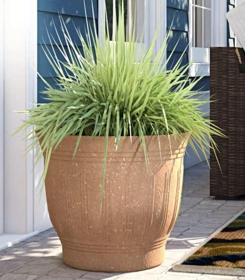 Estelle Plastic Pot Planter