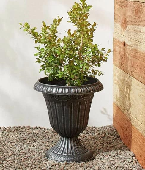Kenny Traditional Urn Planter