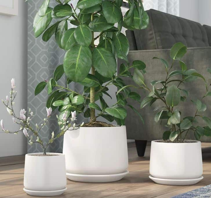 Palazzolo Modern Ceramic Pot Planter Set
