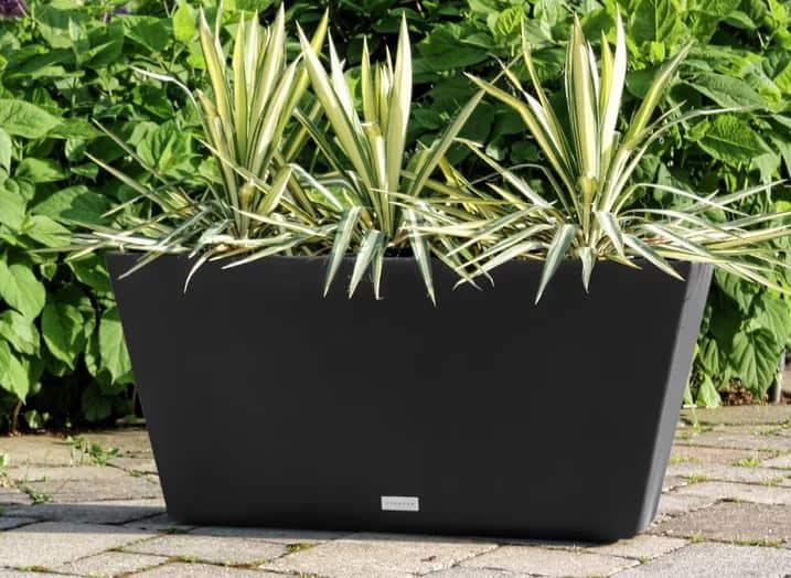 Pure Series Plastic Pot Planter Large