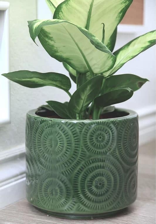 Romain Ceramic Pot Planter